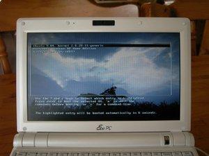 Ubuntu_grub_pic