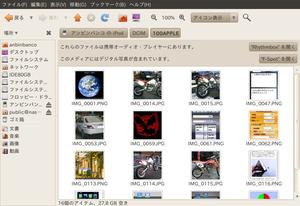 Ipod_pic